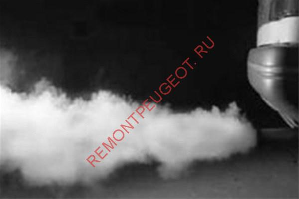 ситроен с5 дымит белым дымом