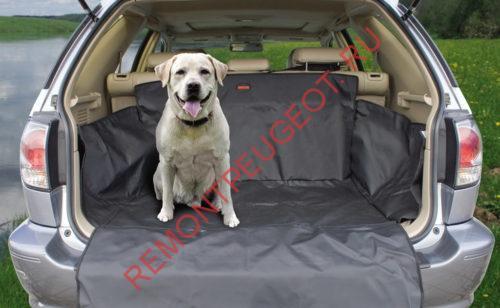 Перевозка собаки в багажном отделении автомобиля
